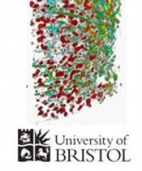 University of Bristol – School of Physiology & Pharmacology